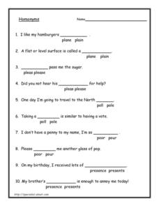 Homonyms 5 Lesson Plan