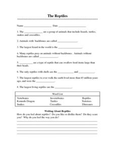 The Reptiles Worksheet