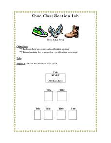 Shoe Classification Lab Lesson Plan