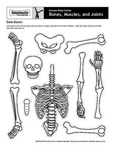 human body series bones muscles and joints dem bones printables template for 4th 8th. Black Bedroom Furniture Sets. Home Design Ideas