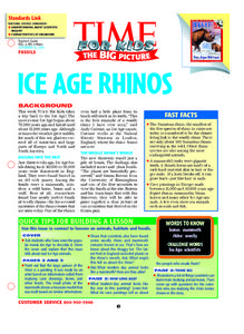 Ice Age Rhinos Lesson Plan