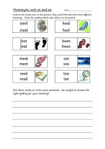 Homonyms with ee and ea Worksheet