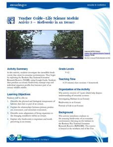 Biodiversity in an Estuary Lesson Plan