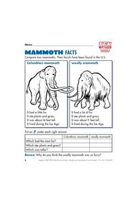 Mammoth Facts Lesson Plan