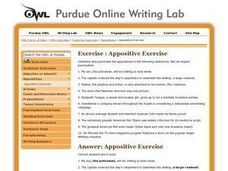 Appositive Exercise Worksheet