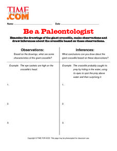 Be a Paleontologist Lesson Plan
