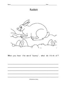 Rabbit Writing Prompt Worksheet