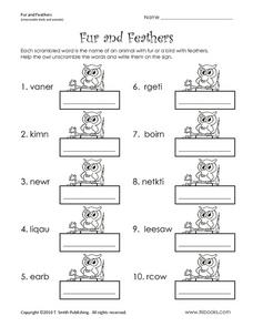 Fur and Feathers Worksheet