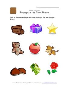 Recognize the Color Brown Worksheet
