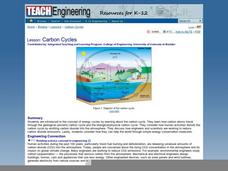 Carbon Cycles Lesson Plan