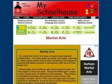 Martial Arts Interactive