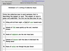 Worksheet 1/7 on Collective Nouns Worksheet