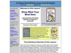 Show What your Mind Sees Lesson Plan