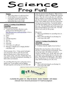Frog Fun! Lesson Plan