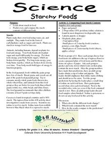 Science-Starchy Foods Lesson Plan