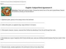 English: Subject/Verb Agreement II Worksheet