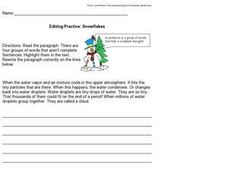 Editing Practice: Snowflakes Worksheet