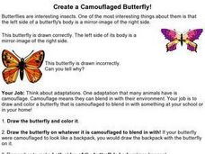 Create a Camouflaged Butterfly! Worksheet
