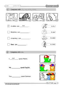 Can: Positive Form Worksheet