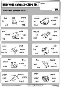 Halloween Animals Picture Test Lesson Plan