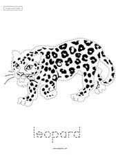 Trace and Color: Leopard Worksheet