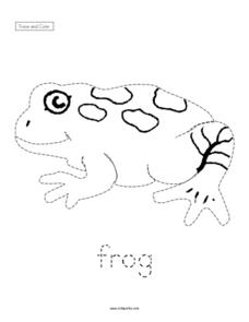 Trace and Color: Frog Worksheet