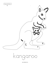 Trace and Color: Kangaroo Worksheet