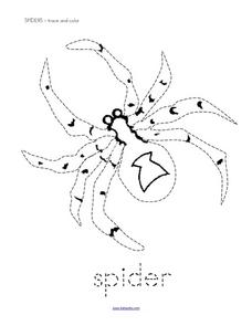 Spiders - Trace and Color Worksheet