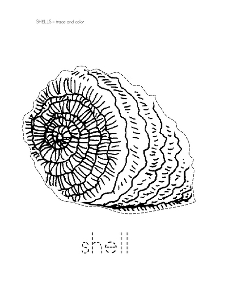 Trace and Color; Shell Worksheet