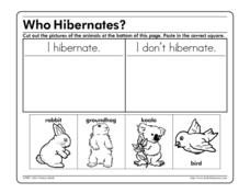 Who Hibernates? Worksheet