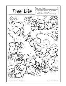 Tree Life Coloring Sheet Worksheet
