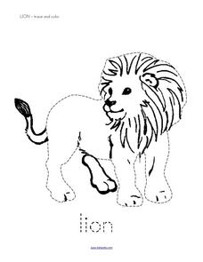 Trace and Color: Lion Worksheet