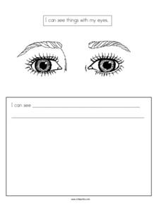 Writing Prompt: Sight Worksheet