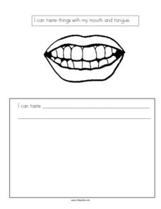 Writing Prompt: Taste Worksheet