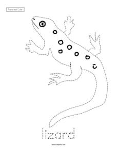 Trace and Color: Lizard Worksheet
