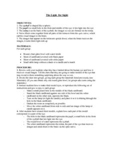 The Light for Sight Worksheet