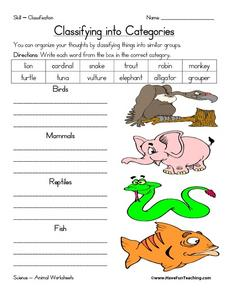 Classifying into Categories Worksheet