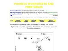Phonics: Mike Flies a Kite Worksheet