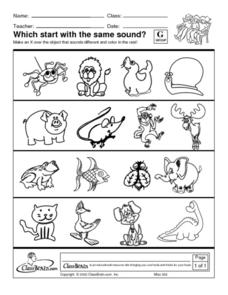 Which Start with the Same Sound? Worksheet