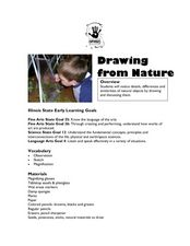 Drawing From Nature Lesson Plan