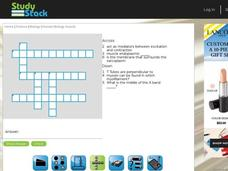Human Biology Crossword Puzzle Interactive