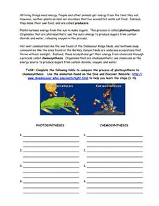 Photosynthesis vs. Chemosynthesis Worksheet