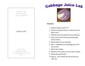 Cabbage Juice Lab Worksheet