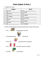 Nouns Singular and Plural 1 Worksheet