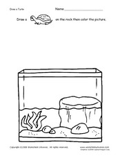 Draw a Turtle Worksheet