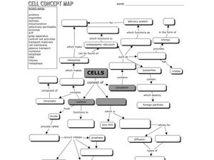 Cell Concept Map Worksheet