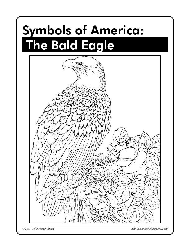 Symbols of America: The Bald Eagle Worksheet for