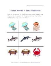 Ocean Animals- Same Worksheet Worksheet