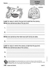 Compare and Contrast: Furry Mouse Worksheet