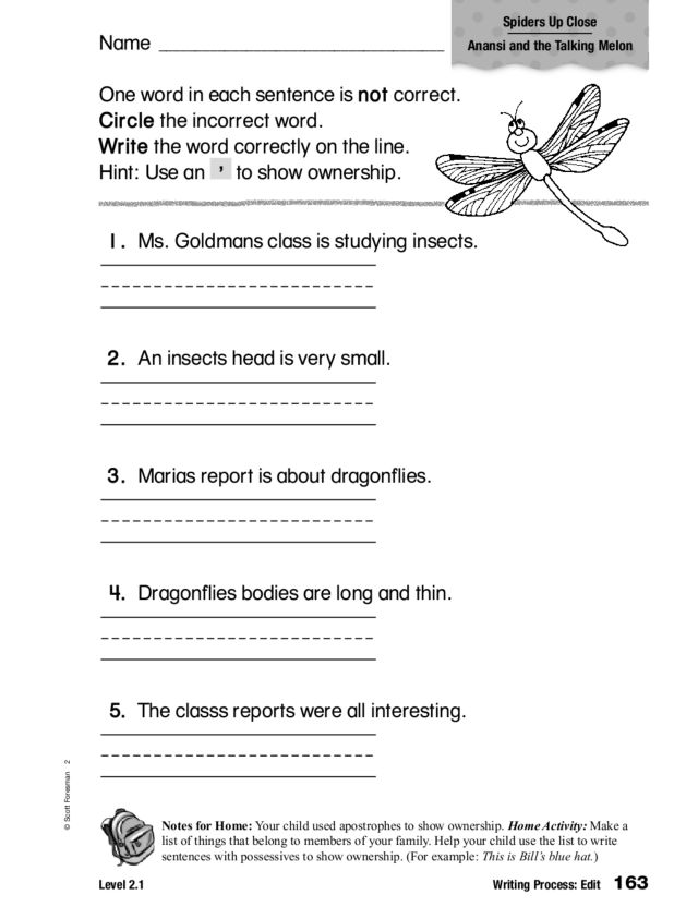 Writing Process Edit Apostrophe 1st 2nd Grade Worksheet – Writing Process Worksheet